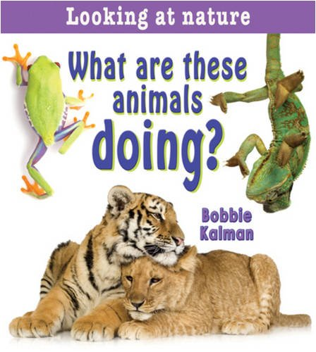 9780778733447: What Are These Animals Doing? (Looking at Nature)