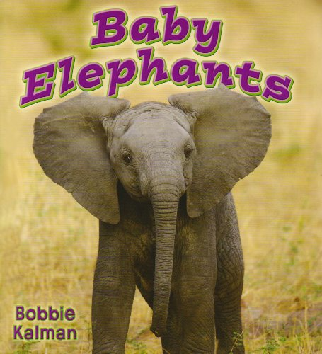 9780778739784: Baby Elephants (It's Fun to Learn About Baby Animals)
