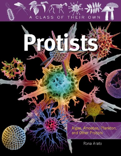 9780778753919: Protists: Algae, Amoebas, Plankton, and Other Protists (A Class of Their Own)