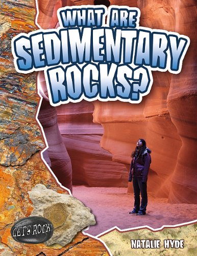 What Are Sedimentary Rocks? (Let's Rock!): Hyde, Natalie