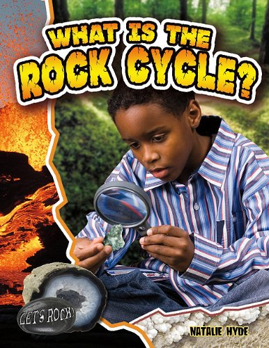 What Is the Rock Cycle? (Let's Rock!): Natalie Hyde