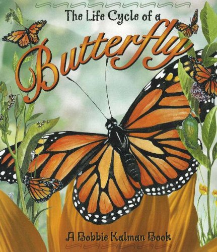 9780778776895: The Life Cycle of a Butterfly [With CD]