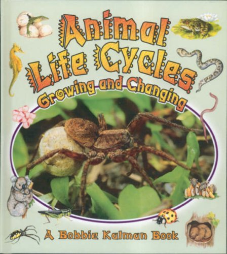 9780778777236: Animal Life Cycles: Growing and Changing (Nature's Changes)