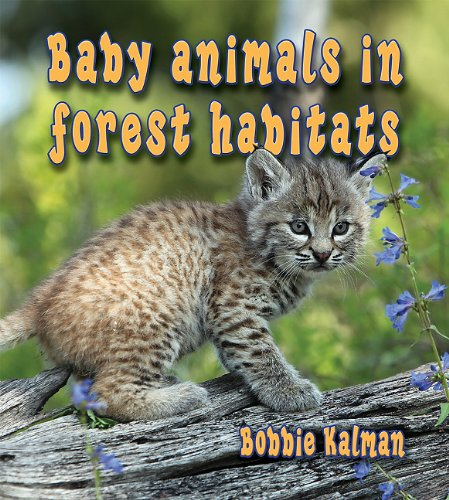 9780778777267: Baby Animals in Forest Habitats (Habitats of Baby Animals (Library))