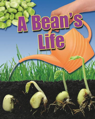 A Bean's Life (Crabtree Connections) (0778778401) by Angela Royston