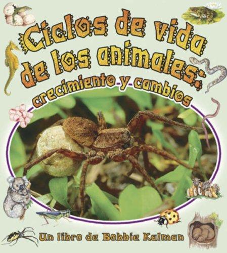 9780778783756: Ciclos de Vida de los Animales: Crecimiento y Cambios (Cambios Que Suceden en la Naturaleza) (Spanish Edition)