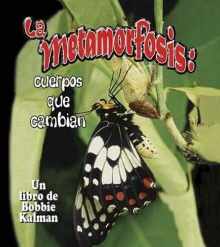9780778783879: La Metamorfosis/ Metamorphosis: Cuerpos Que Cambian (Cambios Que Suceden En La Naturaleza / Nature's Changes) (Spanish Edition)