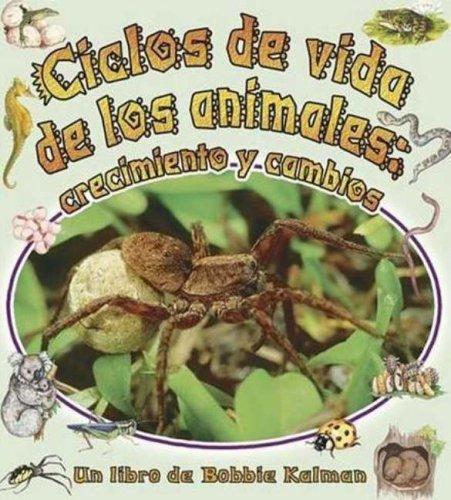 9780778783893: Ciclos De Vida De Los Animales/the Animal's Life Cycle: Crecimiento Y Cambios (Cambios Que Suceden En La Naturaleza / Nature's Changes) (Spanish Edition)