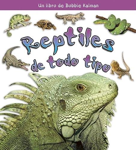 Reptiles De Todo Tipo / All Kinds of Reptiles (Que Tipo De Animal Es? / What Kind of ...