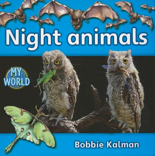 Night Animals (Bobbie Kalman's Leveled Readers: My World: E (Paperback)): Bobbie Kalman