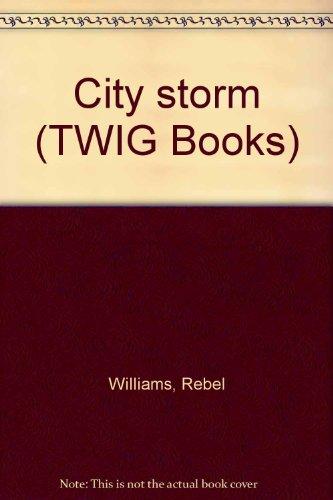 9780780290969: City storm (TWIG Books)