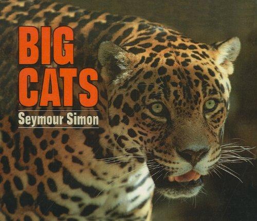 9780780742819: Big Cats