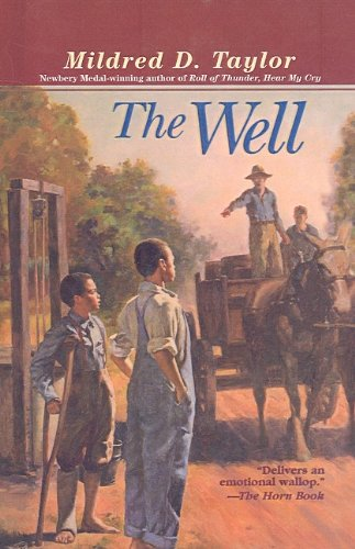 9780780787230: The Well: David's Story
