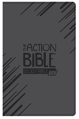 9780781412964: The Action Bible Study Bible ESV: English Standard Version, Virtual Leather, Slate Gray