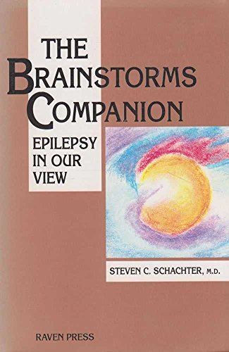 The Brainstorms Companion: Epilepsy in Our View