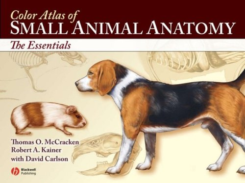 9780781743914: Color Atlas of Small Animal Anatomy: The Essentials