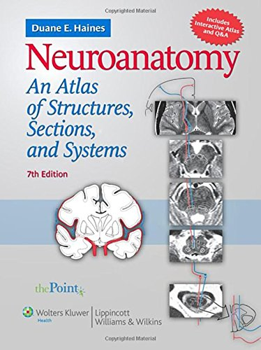 9780781763288: Neuroanatomy: An Atlas of Structures, Sections, and Systems (Point (Lippincott Williams & Wilkins))