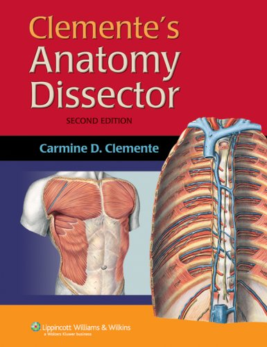 9780781763394: Clemente's Anatomy Dissector