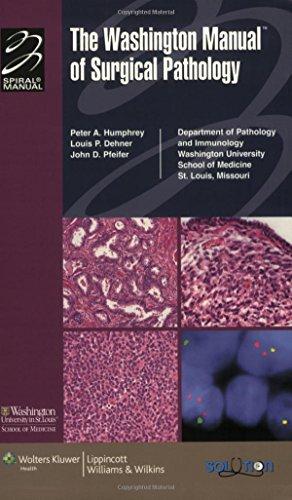 the washington manual of surgical pathology department of pathology rh abebooks com washington manual of surgical pathology pdf washington manual of surgical pathology latest edition