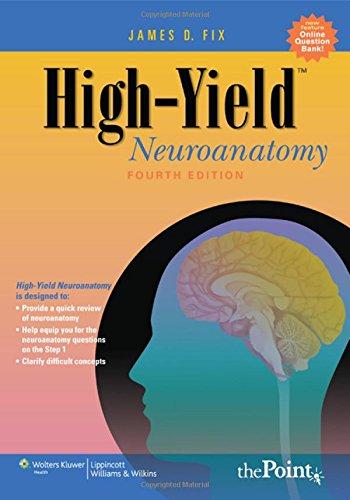 9780781779463: High-yield Neuroanatomy (High-Yield Series)