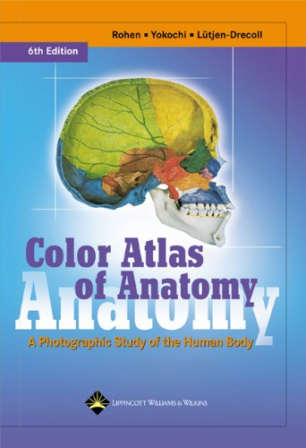 9780781790130: Color Atlas of Anatomy: A Photographic Study of the Human Body (Color Atlas of Anatomy (Rohen))