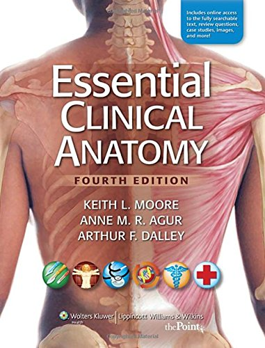 Essential Clinical Anatomy, 4th Edition: Keith L. Moore