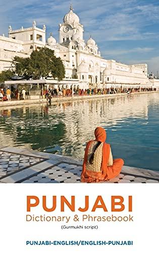 9780781813006: Punjabi-English/English-Punjabi Dictionary & Phrasebook