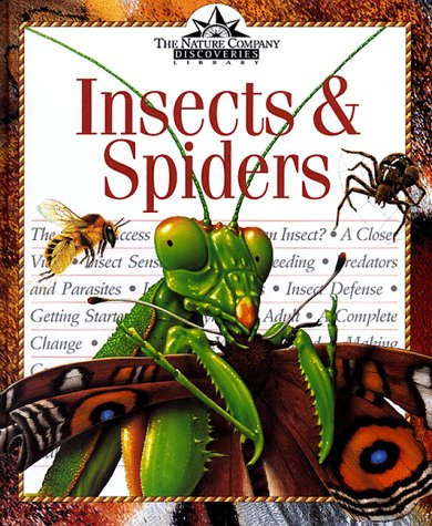Insects & Spiders (Nature Company Discoveries Libraries): David Burnie