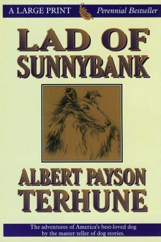 Lad of Sunnybank (Thorndike Classics): Terhune, Albert Payson