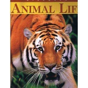 9780785384557: Discover Animal Life