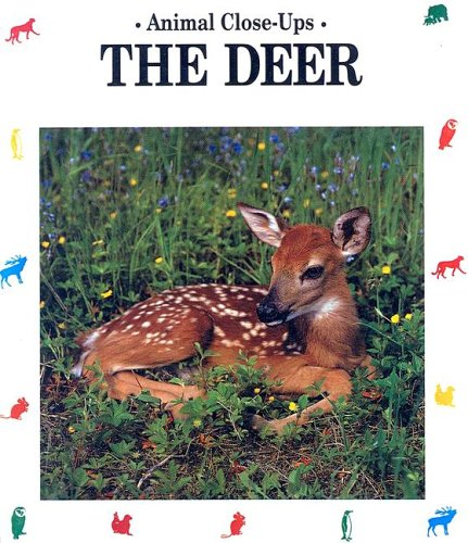 9780785708971: The Deer: Forest Friend (Animal Close-Ups)
