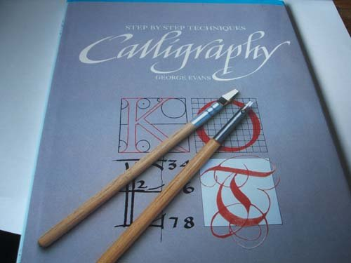 9780785803324: Step by Step Techniques: Calligraphy