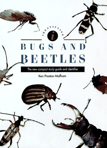 9780785808770: Identifying Bugs and Beetles (Identifying Guide)