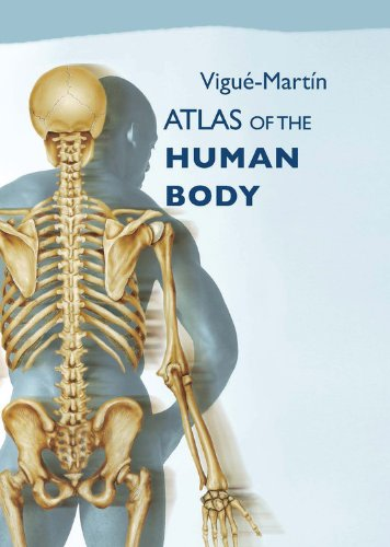 9780785820505: Atlas of the Human Body