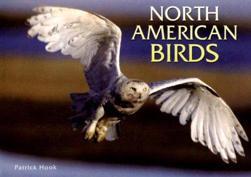9780785822196: North American Birds