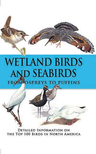 9780785826002: Wetland Birds and Seabirds: From Ospreys to Puffins