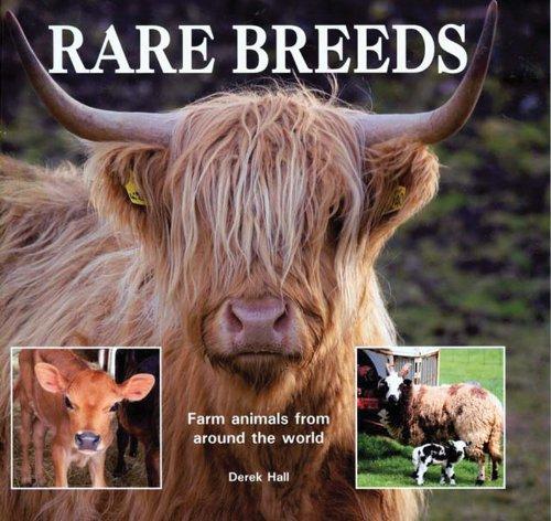 9780785826460: Rare Breeds: Farm Animals from Around the World
