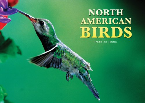 9780785827863: North American Birds