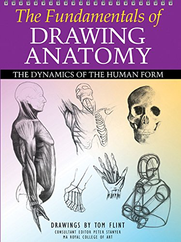 9780785828907: The Fundamentals of Drawing Anatomy: The Dynamics of the Human Form