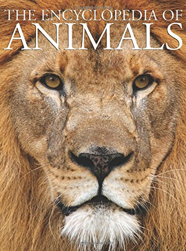 9780785830801: The Encyclopedia of Animals