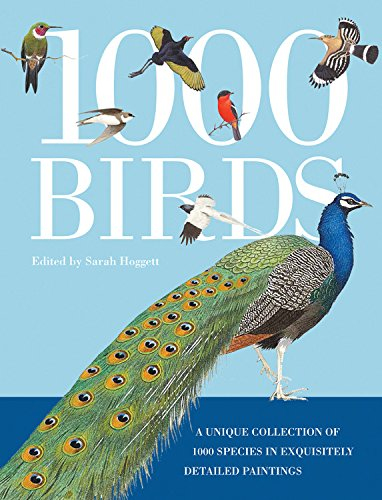 9780785832744: 1,000 Birds: A Unique Collection of 1,000 Species in Exquisitely Detailed Paintings