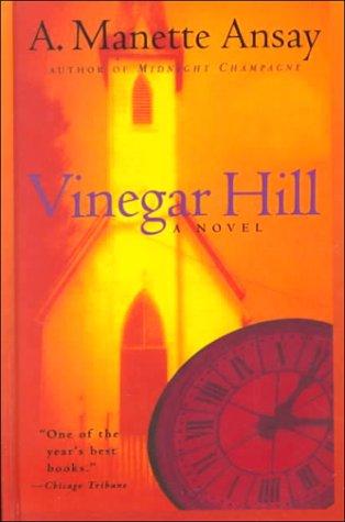 9780786225118: Vinegar Hill: A Novel