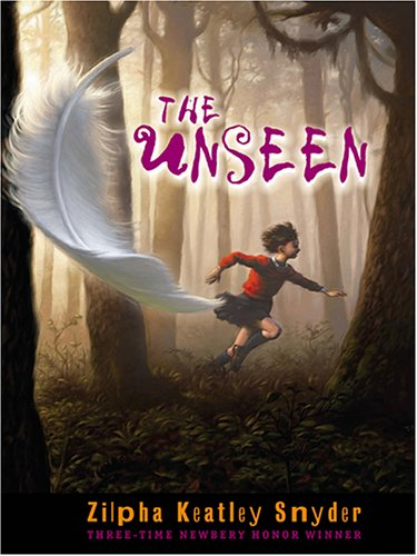 9780786272655: The Unseen (Thorndike Press Large Print Literacy Bridge Series)