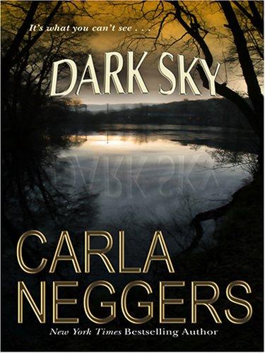 9780786282388: Dark Sky