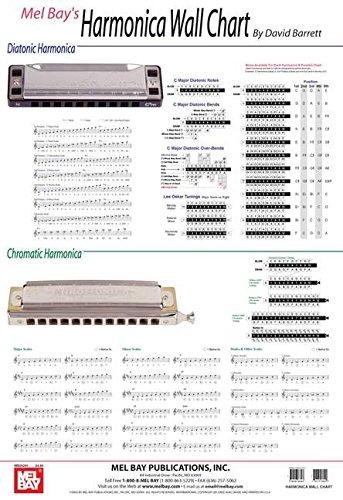9780786667567: Harmonica Wall Chart
