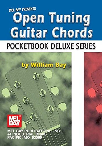9780786675395: Open Tuning Guitar Chords (Pocketbook Deluxe)