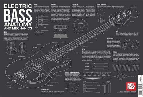 9780786685363: Electric Bass Anatomy and Mechanics Wall Chart