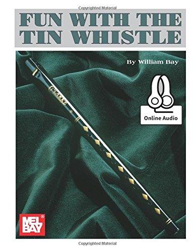 9780786689804: Fun with the Tin Whistle