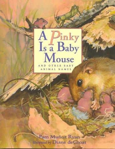 9780786802401: A Pinky is a Baby Mouse: And Other Baby Animal Names