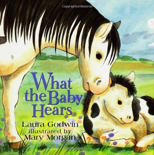 9780786805600: What the Baby Hears